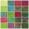 "Island Strip Pack from Island Batik - (40) 2 1/2"" Strips - Splash Collection"
